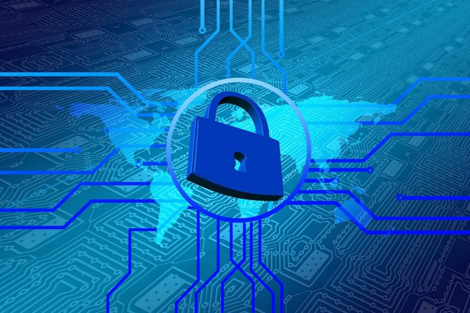 cybersecurity forzespeciali
